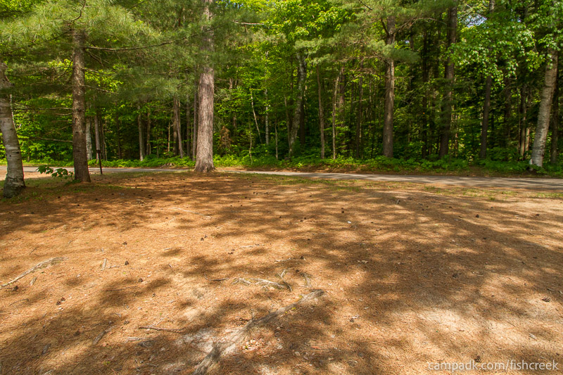 Campsite Photo of Site 123 at Fish Creek Pond Campground, New York - Looking Back Towards Road
