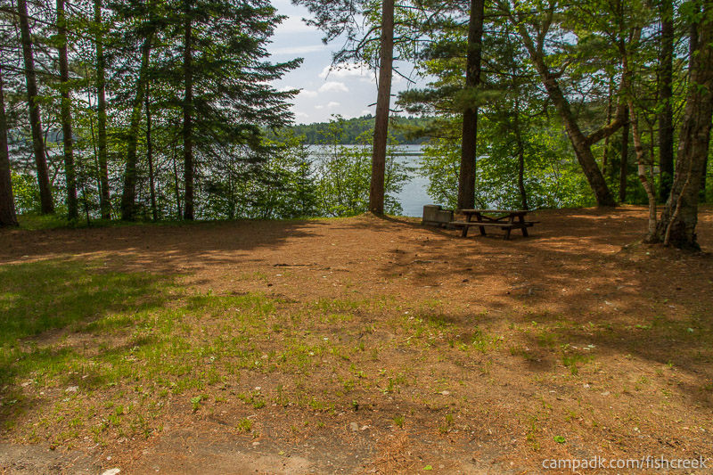 Campsite Photo of Site 125 at Fish Creek Pond Campground, New York - Looking at Site from Road