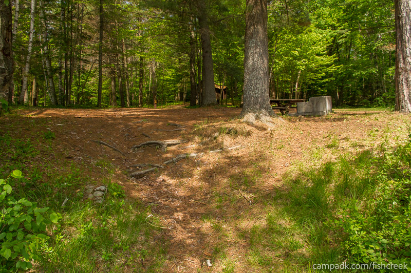 Campsite Photo of Site 125 at Fish Creek Pond Campground, New York - Returning Along Pathway from Water