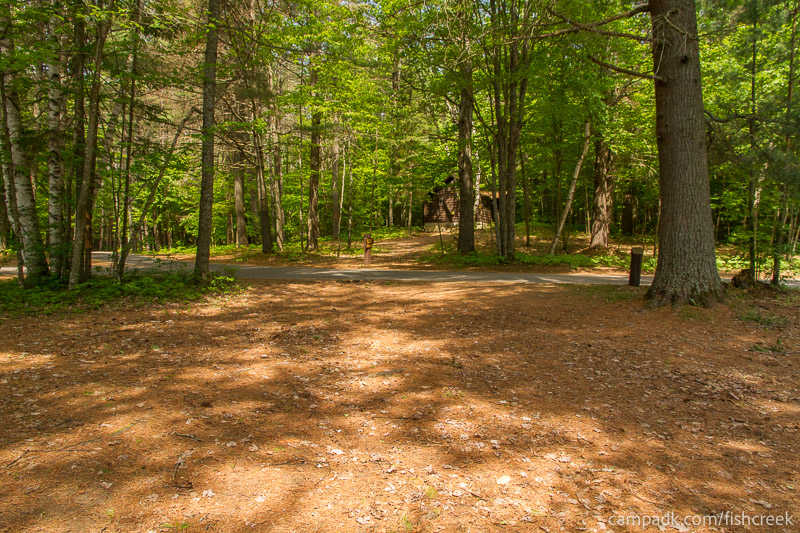 Campsite Photo of Site 125 at Fish Creek Pond Campground, New York - Looking Back Towards Road