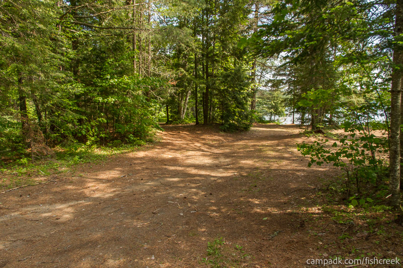 Campsite Photo of Site 138 at Fish Creek Pond Campground, New York - Looking at Site from Road
