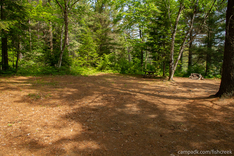Campsite Photo of Site 138 at Fish Creek Pond Campground, New York - Looking at Site from Part Way In