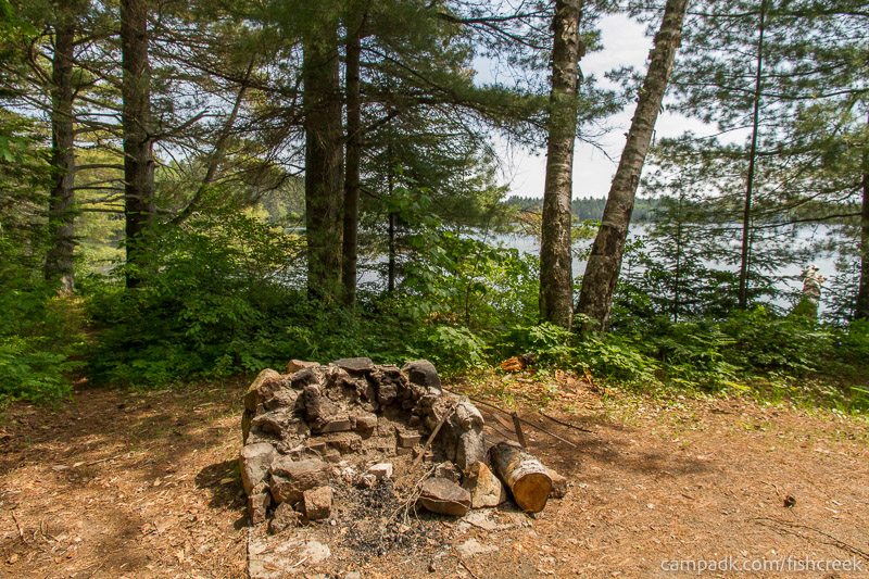 Campsite Photo of Site 138 at Fish Creek Pond Campground, New York - Fireplace View