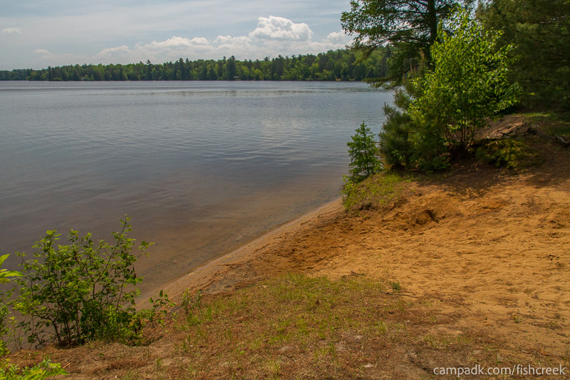 Campsite Photo of Site 143 at Fish Creek Pond Campground, New York - Shoreline