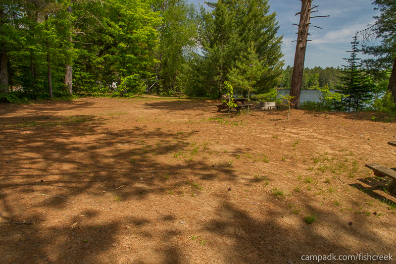 Campsite Photo of Site 145 at Fish Creek Pond Campground, New York - Cross Site View