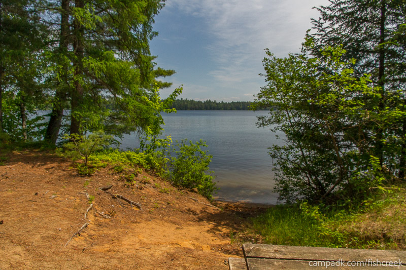 Campsite Photo of Site 145 at Fish Creek Pond Campground, New York - Shoreline