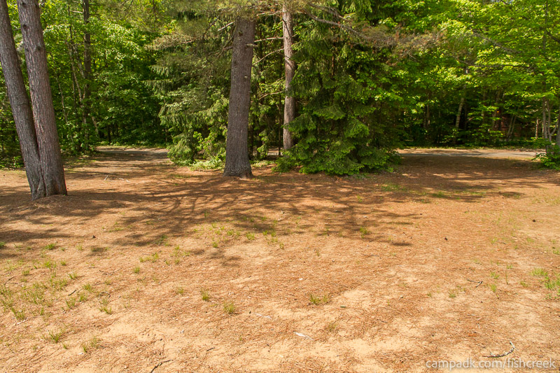 Campsite Photo of Site 145 at Fish Creek Pond Campground, New York - Looking Back Towards Road