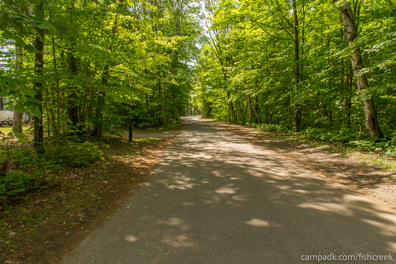 Campsite Photo of Site 145 at Fish Creek Pond Campground, New York - View Down Road from Campsite