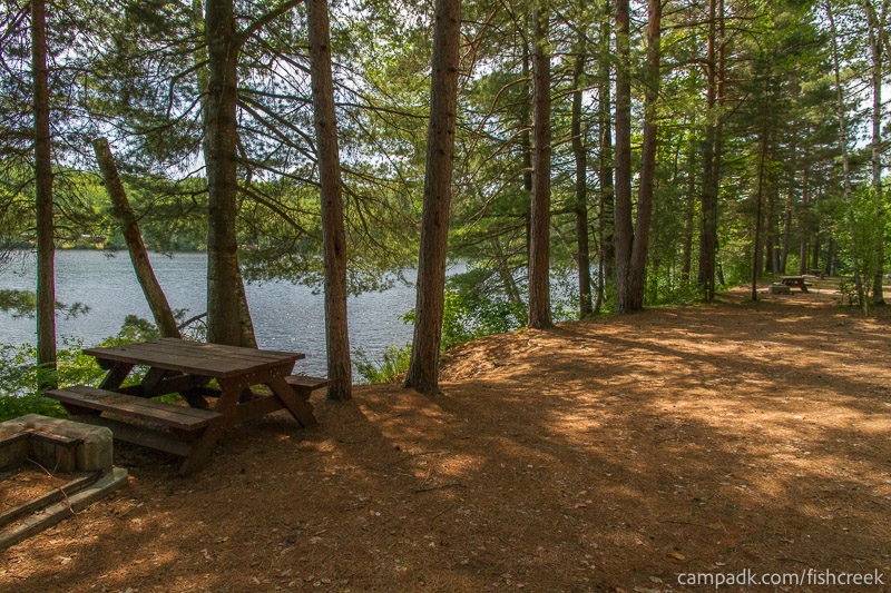 Campsite Photo of Site 152 at Fish Creek Pond Campground, New York - Cross Site View