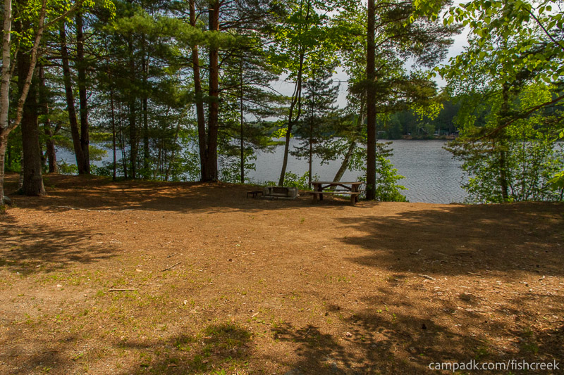 Campsite Photo of Site 153 at Fish Creek Pond Campground, New York - Looking at Site from Road