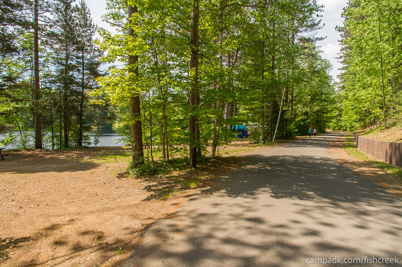 Campsite Photo of Site 153 at Fish Creek Pond Campground, New York - View Down Road from Campsite