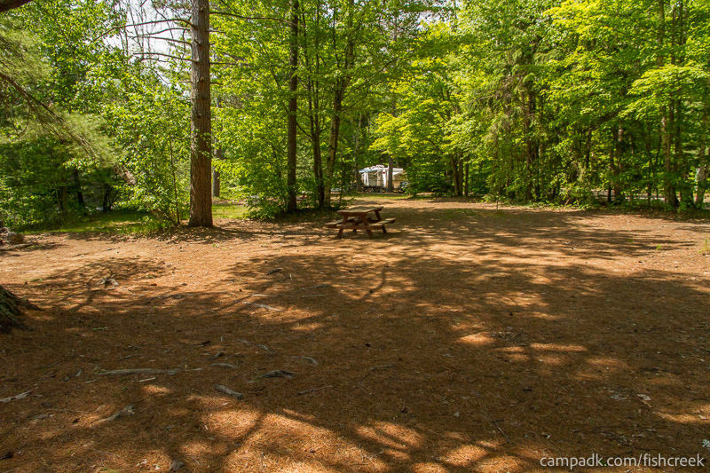 Campsite Photo of Site 157 at Fish Creek Pond Campground, New York - Cross Site View