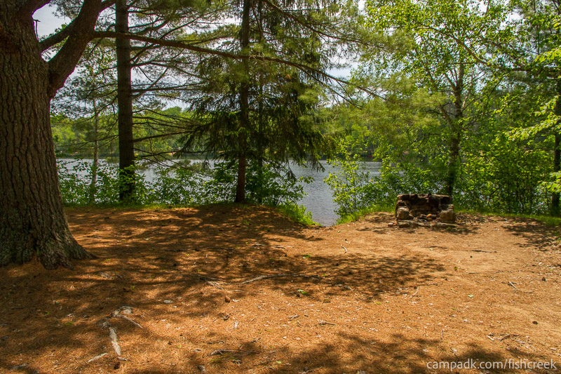 Campsite Photo of Site 157 at Fish Creek Pond Campground, New York - Looking at Site from Part Way In