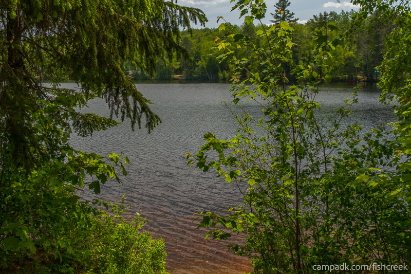 Campsite Photo of Site 157 at Fish Creek Pond Campground, New York - View from Shoreline