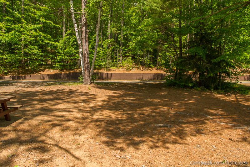 Campsite Photo of Site 157 at Fish Creek Pond Campground, New York - Looking Back Towards Road