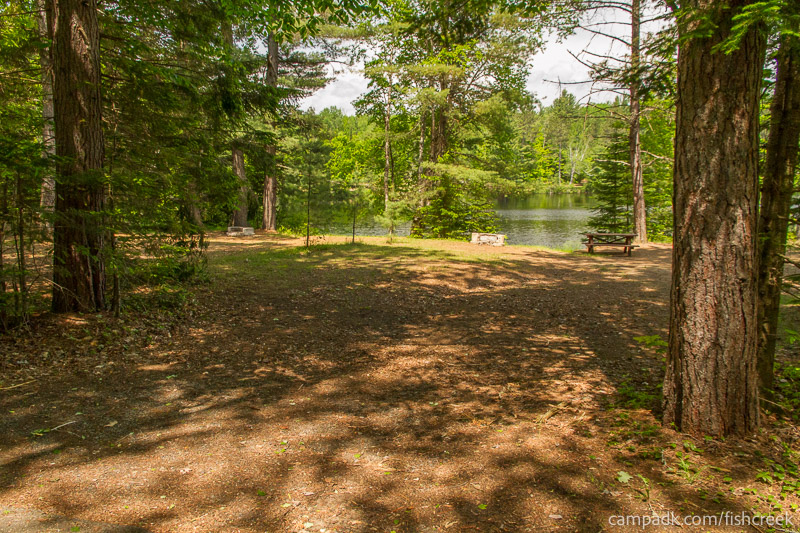 Campsite Photo of Site 170 at Fish Creek Pond Campground, New York - Looking at Site from Road