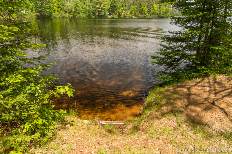 Campsite Photo of Site 170 at Fish Creek Pond Campground, New York - Shoreline