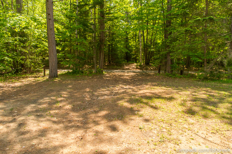 Campsite Photo of Site 170 at Fish Creek Pond Campground, New York - Looking Back Towards Road