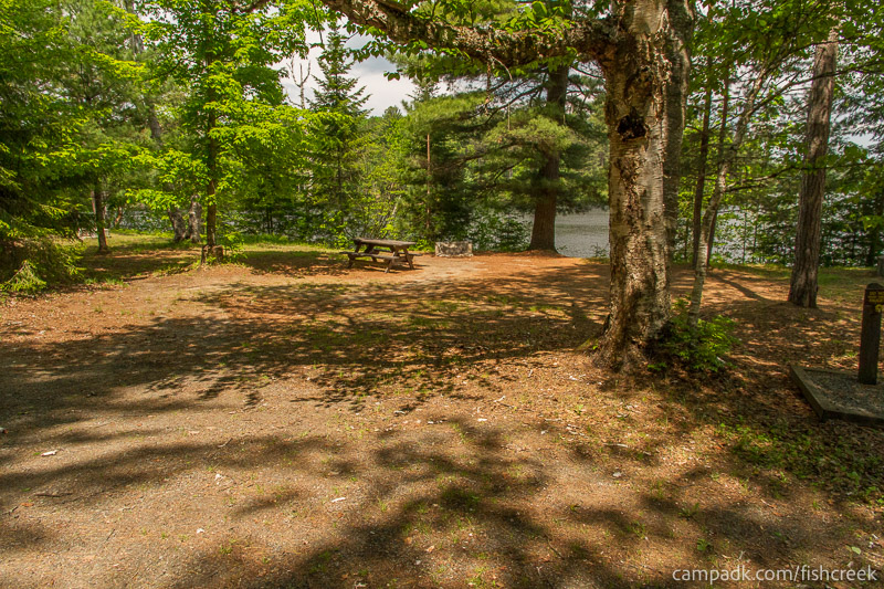 Campsite Photo of Site 175 at Fish Creek Pond Campground, New York - Looking at Site from Road