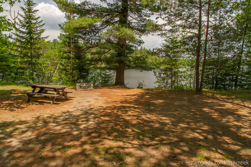 Campsite Photo of Site 175 at Fish Creek Pond Campground, New York - Looking at Site from Part Way In