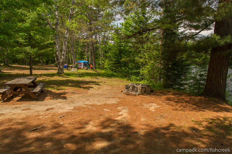 Campsite Photo of Site 175 at Fish Creek Pond Campground, New York - Cross Site View