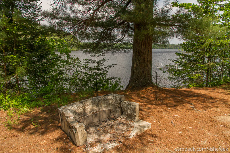 Campsite Photo of Site 175 at Fish Creek Pond Campground, New York - Fireplace View