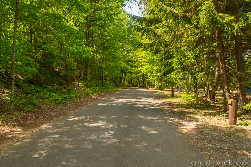 Campsite Photo of Site 175 at Fish Creek Pond Campground, New York - View Down Road from Campsite