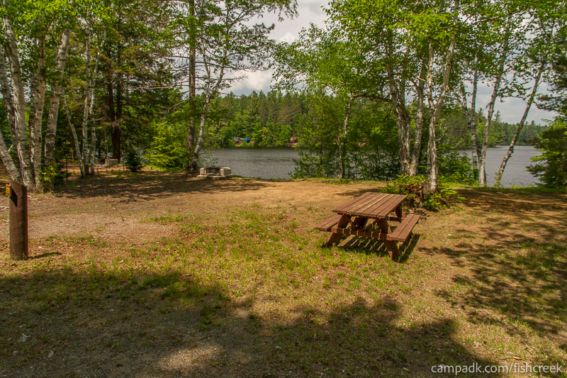 Campsite Photo of Site 179 at Fish Creek Pond Campground, New York - Looking at Site from Road