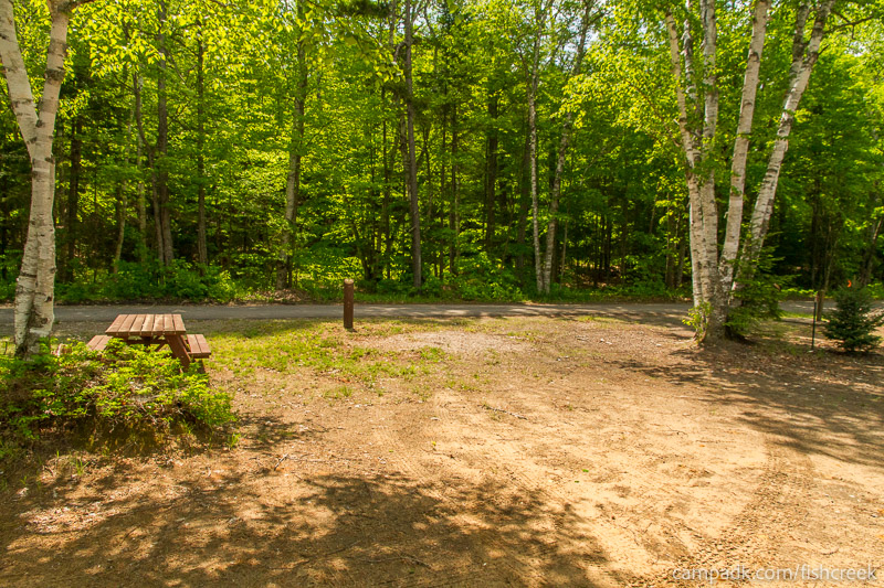 Campsite Photo of Site 179 at Fish Creek Pond Campground, New York - Looking Back Towards Road