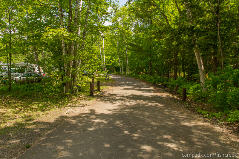 Campsite Photo of Site 179 at Fish Creek Pond Campground, New York - View Down Road from Campsite