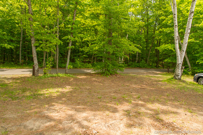 Campsite Photo of Site 200 at Fish Creek Pond Campground, New York - Looking Back Towards Road