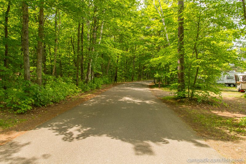 Campsite Photo of Site 200 at Fish Creek Pond Campground, New York - View Down Road from Campsite