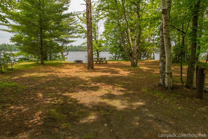 Campsite Photo of Site 203 at Fish Creek Pond Campground, New York - Looking at Site from Road Sign Visible
