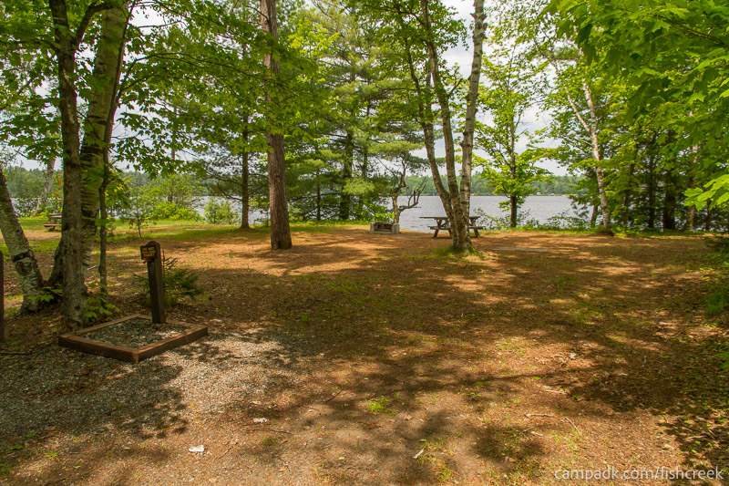 Campsite Photo of Site 203 at Fish Creek Pond Campground, New York - Looking at Site from Road