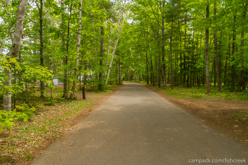 Campsite Photo of Site 203 at Fish Creek Pond Campground, New York - View Down Road from Campsite