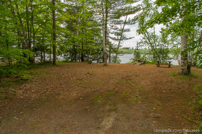 Campsite Photo of Site 204 at Fish Creek Pond Campground, New York - Looking at Site from Road