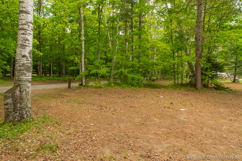 Campsite Photo of Site 204 at Fish Creek Pond Campground, New York - Cross Site View