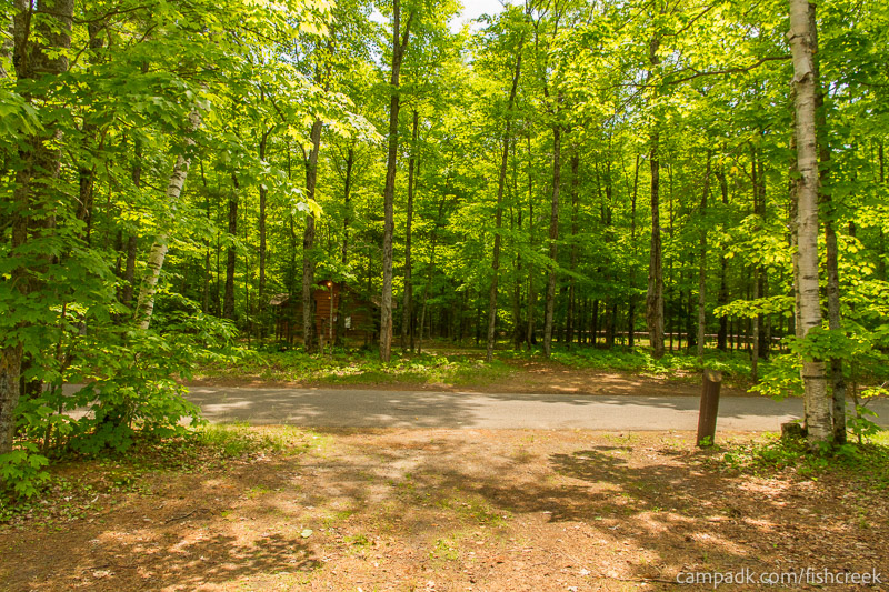Campsite Photo of Site 204 at Fish Creek Pond Campground, New York - Looking Back Towards Road