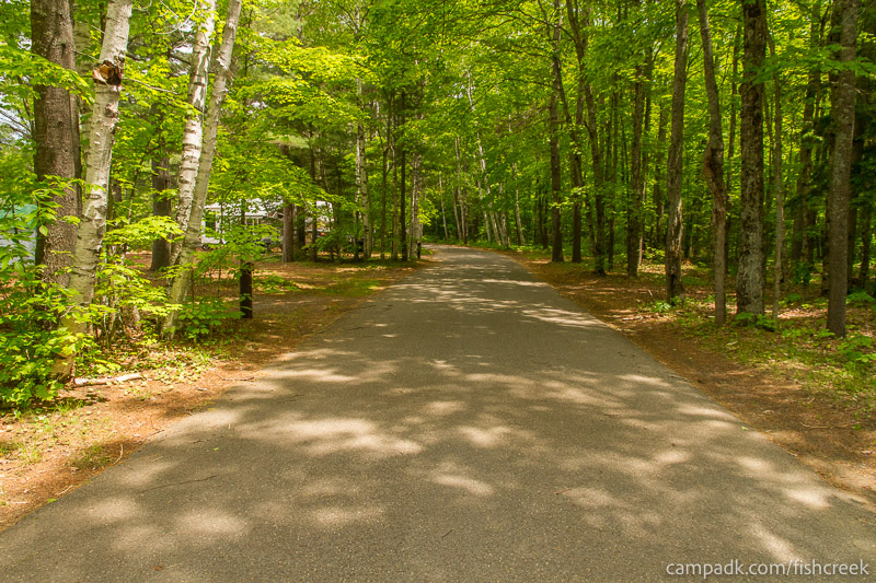 Campsite Photo of Site 204 at Fish Creek Pond Campground, New York - View Down Road from Campsite