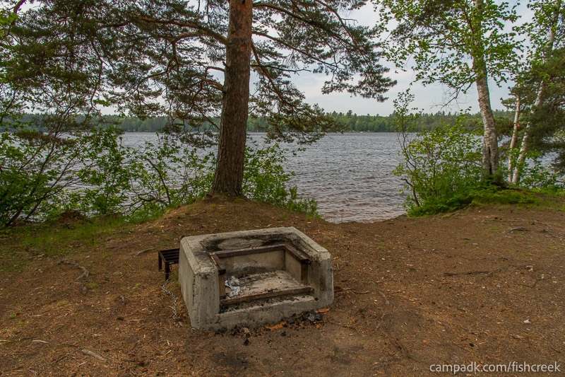 Campsite Photo of Site 213 at Fish Creek Pond Campground, New York - Fireplace View