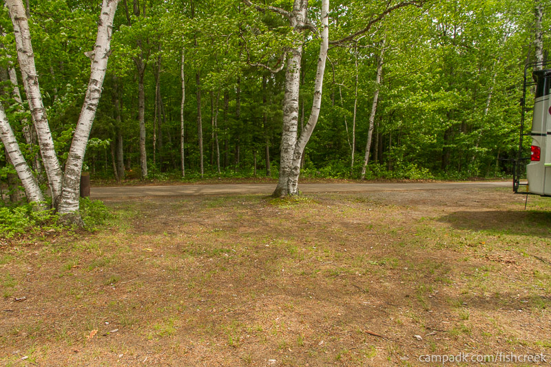 Campsite Photo of Site 213 at Fish Creek Pond Campground, New York - Looking Back Towards Road