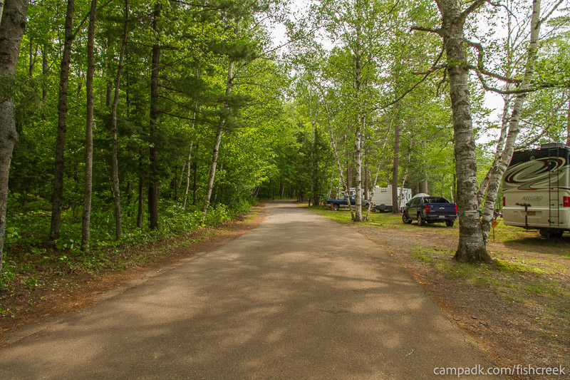 Campsite Photo of Site 213 at Fish Creek Pond Campground, New York - View Down Road from Campsite