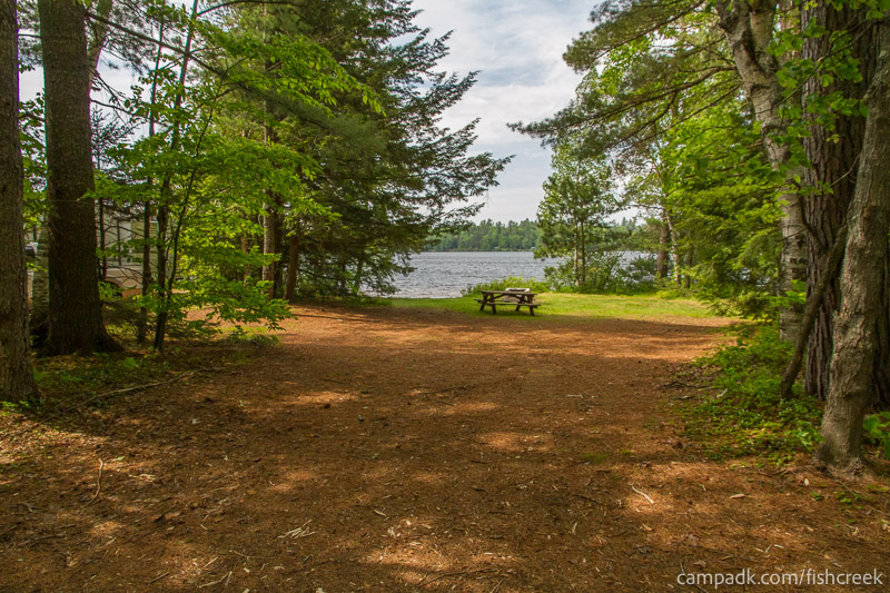 Campsite Photo of Site 217 at Fish Creek Pond Campground, New York - Looking at Site from Road