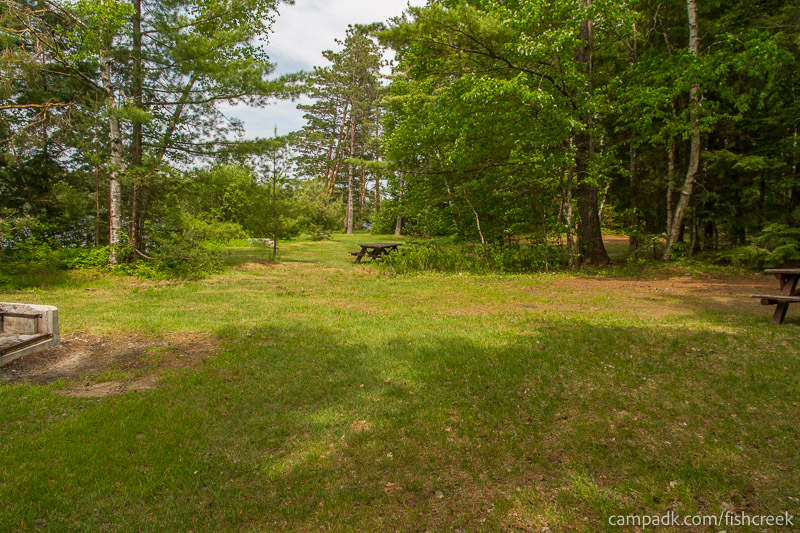 Campsite Photo of Site 217 at Fish Creek Pond Campground, New York - Cross Site View