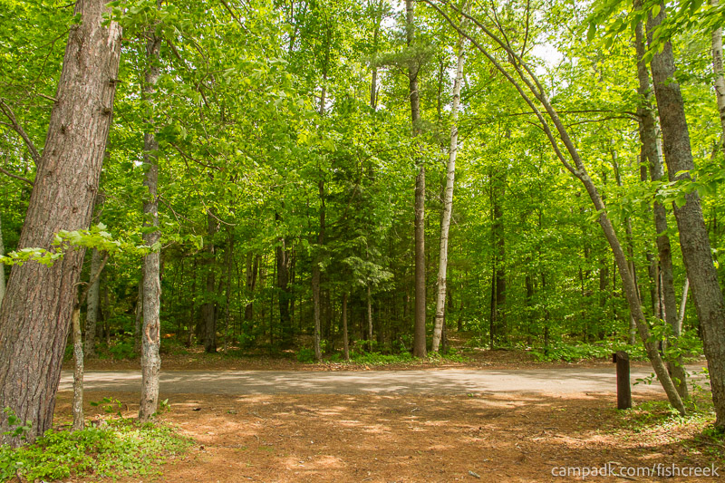 Campsite Photo of Site 217 at Fish Creek Pond Campground, New York - Looking Back Towards Road