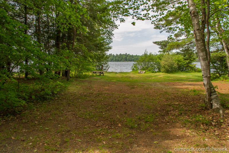 Campsite Photo of Site 218 at Fish Creek Pond Campground, New York - Looking at Site from Road