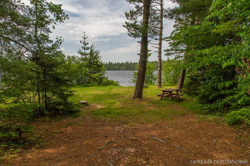 Campsite Photo of Site 219 at Fish Creek Pond Campground, New York - Looking at Site from Part Way In