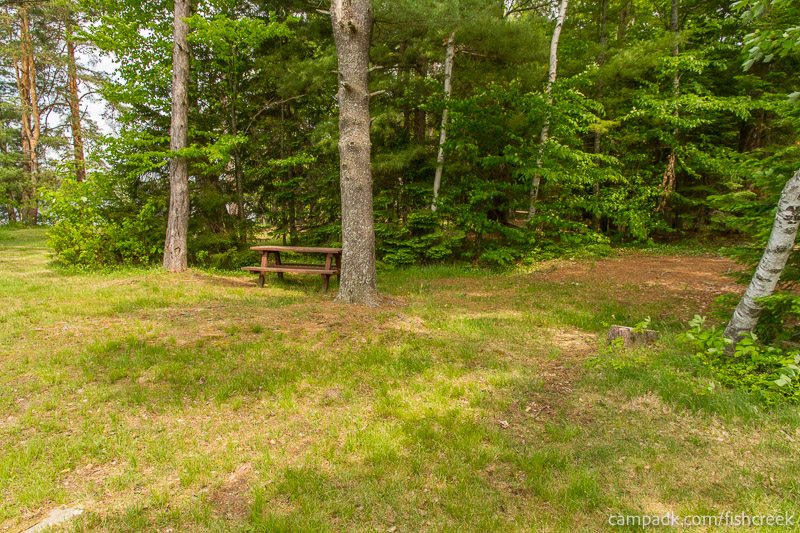 Campsite Photo of Site 219 at Fish Creek Pond Campground, New York - Cross Site View