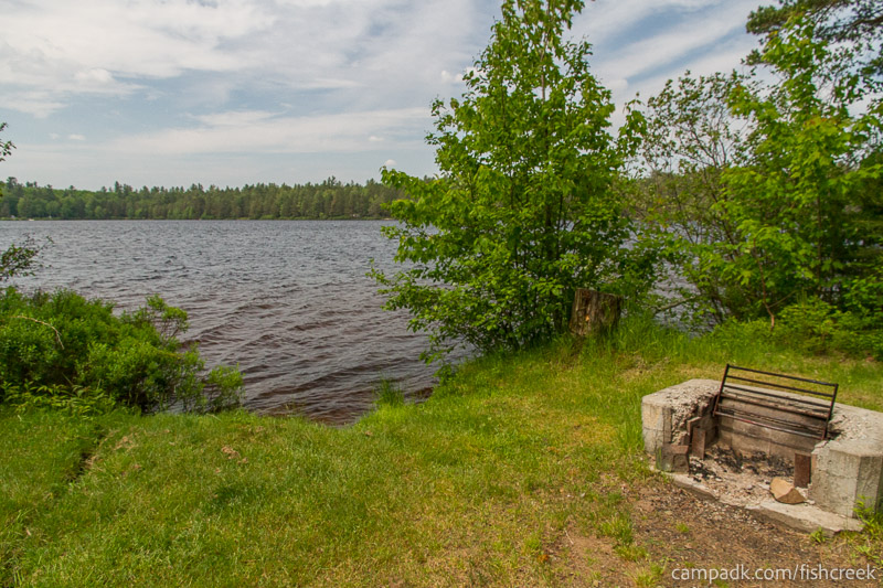 Campsite Photo of Site 219 at Fish Creek Pond Campground, New York - Fireplace View