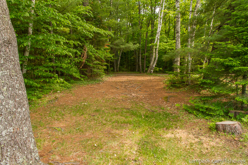 Campsite Photo of Site 219 at Fish Creek Pond Campground, New York - Looking Back Towards Road
